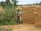 Beim Schamanen Tiegneri Diarra in Mali