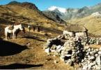 Auf dem Weg zu den letzten Inkas